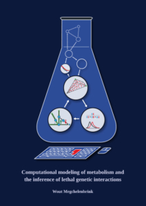 Computational modeling of metabolism and the inference of lethal genetic interactions