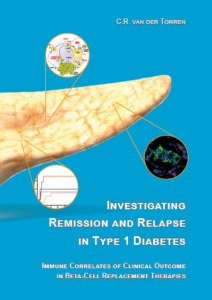 Investigating remission and relapse in type 1 diabetes